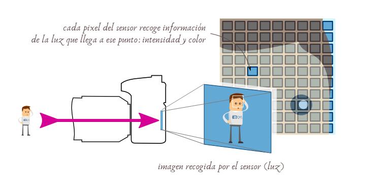 Funcionamiento del sensor de una cámara digital