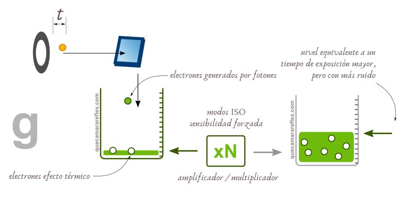 como_funciona_sensor_camara_digital_06