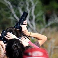 Objetivos para fotografiar aves