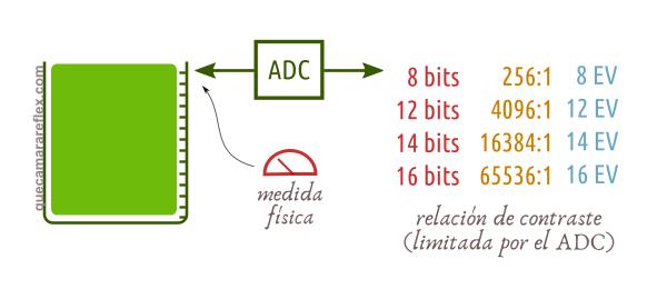 Relación de contraste del ADC- Rango dinámico