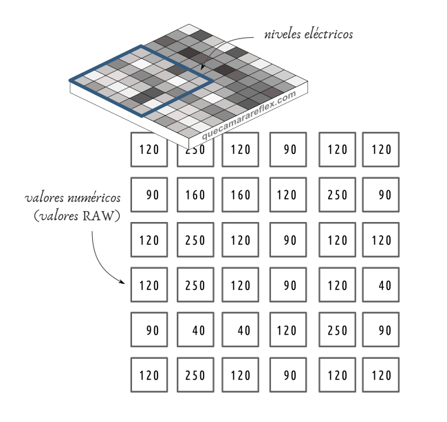 Qué contiene un fichero RAW - Valores del sensor