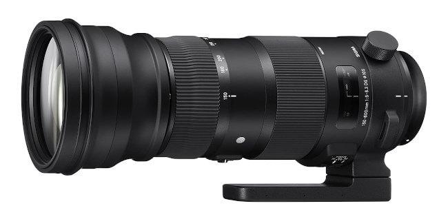 Teleobjetivo zoom Sigma 150-600mm - Muy usado para fotografía de aves